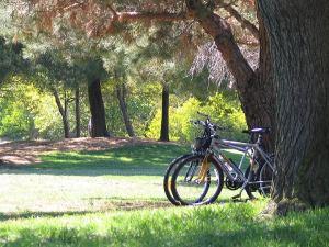 bike_02